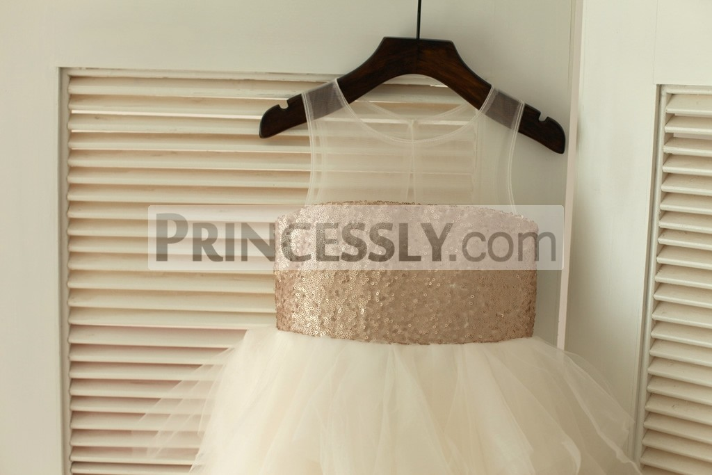 Sheer Champagne Sequins Bodice