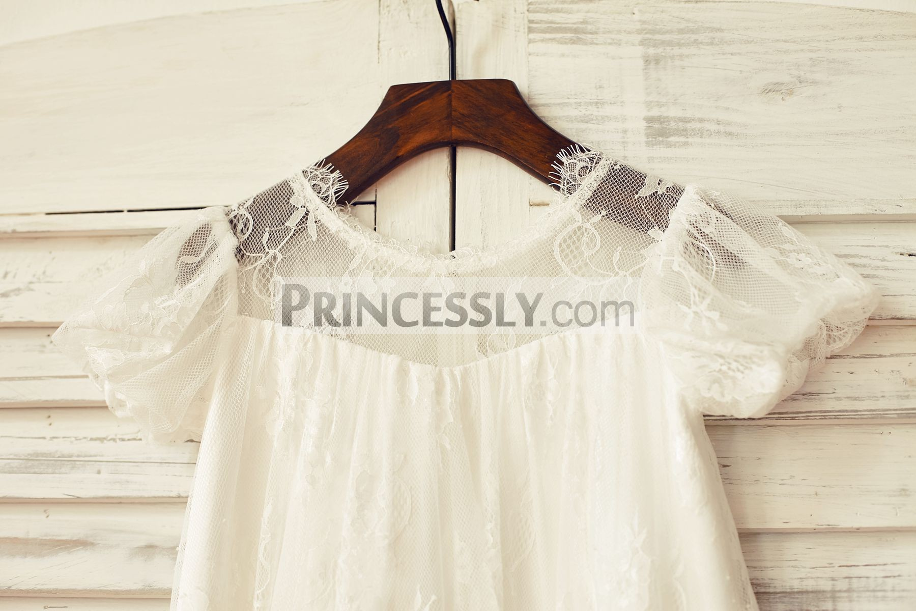 Sheer puffy sleeves and neck bodice