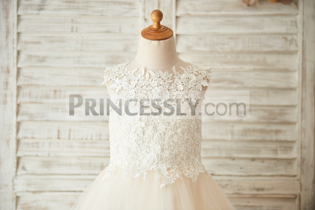Sleeveless, Scoop Neck Bodice All Covered with Lace