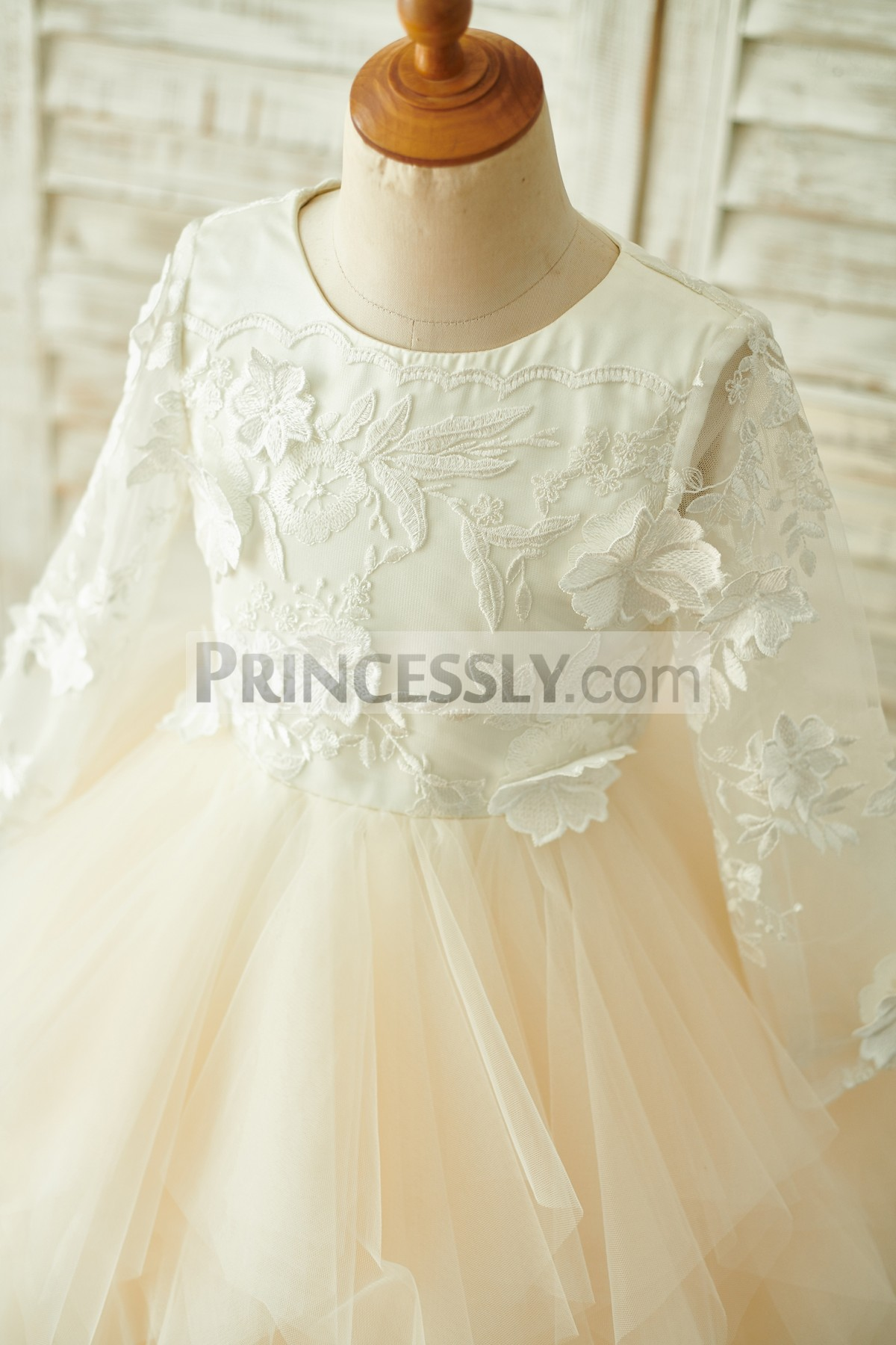 Sheer long sleeves and round neck bodice